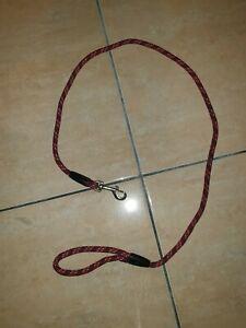 Laisse chien corde rouge