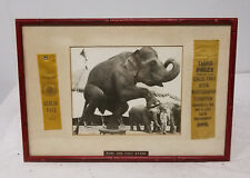 Antique Vintage PHotograph Circus Elephant One Leg Stand Americana