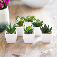 Set of 6 Miniature Mini Artificial Indoor House Office Plants in Pots Planters