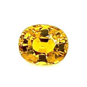 1.45ct Yellow Zircon from Tanzania Oval VVS Dispersion, Natural Gemstone *Video*