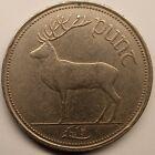 Vintage Eire / Ireland 1 Punt (Pound) 1990, Irish Deer Coin