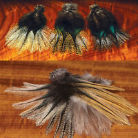 COQ DE LEON FEATHERS - Fly Tying Tailing Material by Hareline - 12 Per Pack NEW!