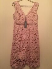 SUMMER Romeo and Juliet Couture Lace Overlay Dress Dusty Rose NWT Size M