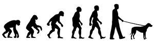 Rhodesian Ridgeback Dog Walker 'Evolution' car sticker, vinyl decal