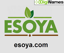 ESOYA.COM - Catchy Pronounceable Brandable 5 Letter. COM Domain Name. BIN!