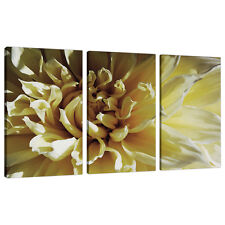 Set of 3 Cream Floral Canvas Prints Pictures Living Room Wall Art 3104