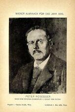 Peter Rosegger nach einem Ölgemälde v. Oscar von Pistor Kunstdruck von 1899