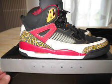 Nike jordan spizike Kings County - Rare -