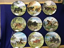 Gorgeous 'Britain's Wild Ponies' Plates - Complete Set of Nine