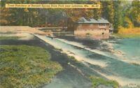Bennett Springs Blair 1940s Lebanon Missouri Trout Hatchery 12212 postcard