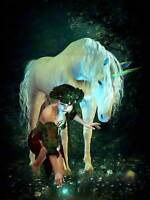 UNICORN PIXI WOMAN POND FIREFLIES PHOTO ART PRINT POSTER PICTURE BMP2191A