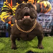 Cuban Link Gold pet Chain 19mm Choker Dog Show Collar 316L Stainless Steel