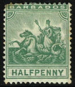 SG 136 BARBADOS 1905 - HALFPENNY GREEN - MOUNTED MINT