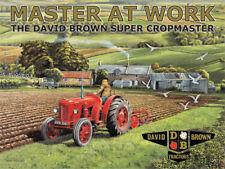 DAVID BROWN maîtresse au travail Petite plaque en acier 200mm x 150mm (OG)