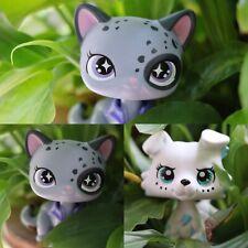 Pet Custom Collie Short hair Cat Blind Box OOAK Rare Figure with LPS Accessories