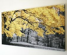 WOODLAND YELLOW TREE BLACK AND WHITE CANVAS WALL ART PICTURE  18 X 32 INCH