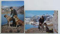 Schweiz Postkarten Lot 2x mit Hund Dog Bernhardiner St.-Bernhard Bernard Hunde
