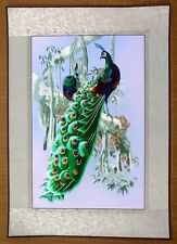 """Chinese embroidery painting peacock 21x30"""" traditional hand-made art"""