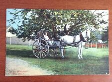 Old One Horse Shay, Relic of New Hampshire, postcard New