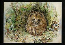 Beatrix Potter Animal Mr. Pricklepin Hedgehog  Postcard 76 / 8HT