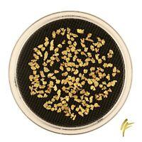 3 Gramm echte Gold-Nuggets aus Alaska 2-3 mm 120-150 Stück 20-23 kt Barren Münze