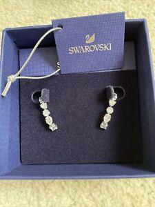 swarovski earrings new in box