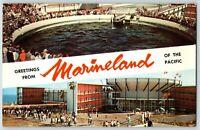 Marineland CA Oceanarium Banner Multiview Porpoise Tank Stadium Postcard Rae