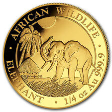 2017 Somalia 1/4 oz Gold African Elephant BU - SKU #102921