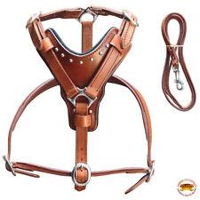 Extra Small Leather Dog Harness Mahogany Genuine Matching Leash Hilason U-0-XS