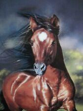 Danbury Mint 'Always Proud' Horse Plate