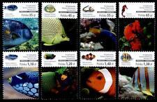 Fische. Korallenfische. 8W. Polen 2014