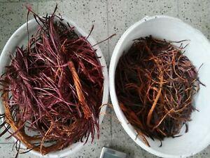 21 Kg Kupferschrott Millberry Kupfer 100 % rein