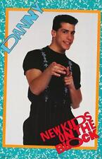 New Kids on the Block # 15 - 8 x 10 Tee Shirt Iron On Transfer Danny Wood
