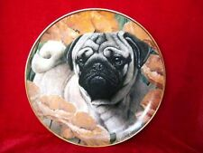 """8"""" DANBURY MINT LIMITED EDITION PUG DOG PUPPY PLATE POPPY LOVE WITH 9ct GOLD RIM"""