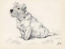 SEALYHAM TERRIER OLD ORIGINAL VINTAGE 1937 DOG PRINT PAGE BY ARTIST VERE TEMPLE