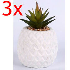 SET OF 3 SUCCULENT PLANT FLOWER PINEAPPLE IN GLASS POT DECORATION ARTIFICIAL NEW