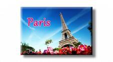Paris Eiffelturm Blumen Foto Magnet Frankreich France Souvenir Fridge