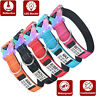 Nylon Personalized Dog Collar Reflective LED Collars Free Engraved Name ID Tag