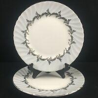 Set of 2 VTG Salad Plates EB Foley Silver Fern Platinum Trim Laurel England