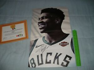 GIANNIS ANTETOKOUNMPO NIKE STORE PROP PLASTIC POSTER SIGNED