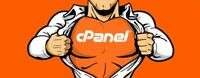 Cpanel Web Hosting + Free SSL + Softaculous... and more