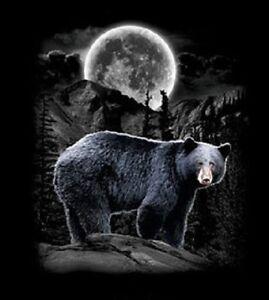 Black Bear  Wilderness /  Sweatshirt /Longsleeved Tshirt    Sizes/Colors  Unisex