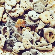 1 Hag Stone-Protection, Fairies, Evil Eye-Wicca-Pagan-Witchcraft