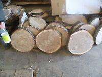 5 Baumscheiben, Baumscheibe, Holzscheibe, 25 x 3 cm, Eiche, teilweise ohne Rinde