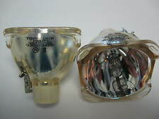 NEW OEM PROJECTOR LAMP BULB FOR BENQ SP831 5J.J2A01.001 SP830 5J.J1Y01.001 SP870