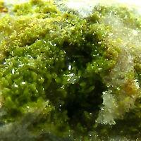 Pyromorphite Crystals Kinniside Mine Cleator Moor Cumbria UK Mineral Specimen
