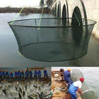 Foldable Drop Net Fishing Landing Net, Prawn Bait Crab Shrimp Pier-Harbour UK