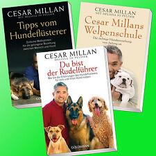 CESAR MILLAN | WELPENSCHULE + DU BIST DER RUDELFÜHRER + TIPPS VOM HUNDEFLÜSTERER