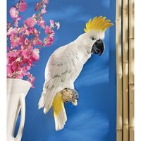 Sulphur-Crested Cockatoo Design Toscano Exclusive Hand Painted Wall Sculpture