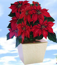 Poinsettia Gift Box - Wrapping as unique as your Present!